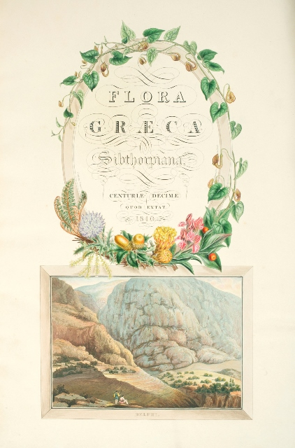 The frontispiece of Flora Graeca, from the National Botanic Gardens Glasnevin Dublin Ireland Copy library artwork
