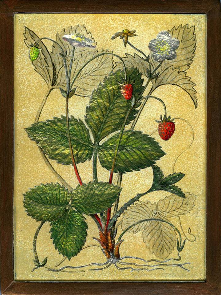 Wild Strawberries by Yanny Petters