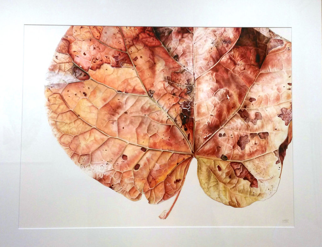 Jess Shepherd, Leaf