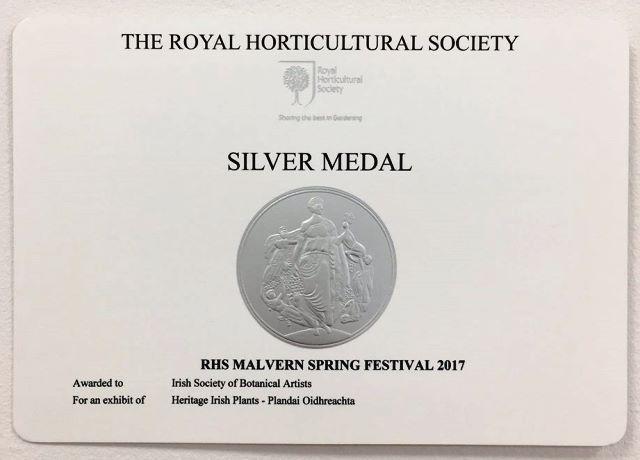RHS silver medal award