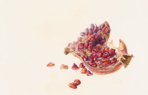 painting of pomegranate